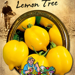 Tomate Lemon Tree