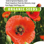 Mohn Red Corn Poppy