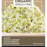 Organic Sprouting Luzerne - Buzzy