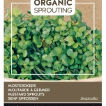 Organic Sprouting Senf Kresse - Buzzy