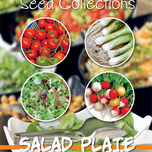 Samen Collection Salad Plate