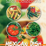 Samen Collection Mexican Dish(4in1